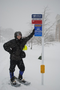 Bus stop on snowshoes